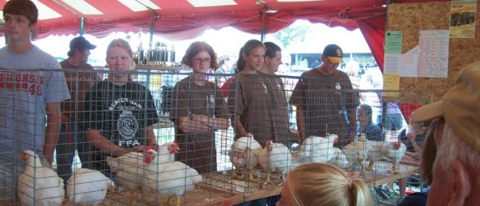 Raising Broilers and Roasters as 4-H and FFA Projects
