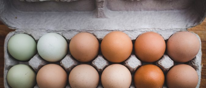 Exhibiting Eggs as a 4-H or FFA Project